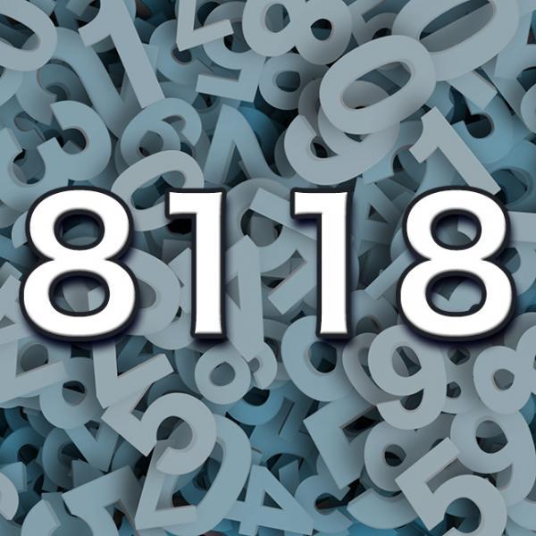 ナンバー 8118 エンジェル